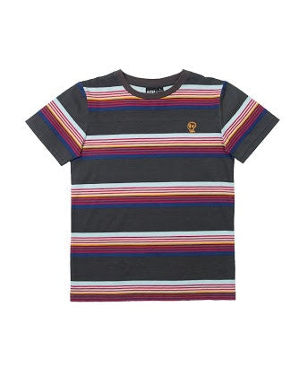 rad-stripe-tee-in-multi colour print