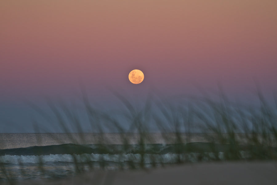 Moonrise Over Dunes