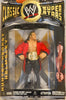 Jakks WWE Classic Superstars, Collector Series - Hunter Hearst Helmsley Triple H