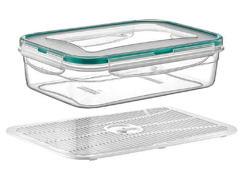 Plast Art - Rectangle Clip Container with Elevated Crisp Tray 2.5L - 25.5x18x8.5cm - ZoeKitchen
