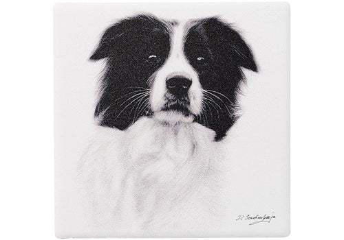 Ashdene Delightful Dogs Coaster - Border Collie