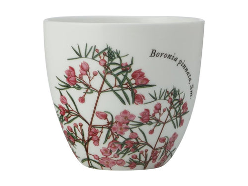 Maxwell & Williams Royal Botanic Garden Tealight Holder Boronia Gift Boxed - ZoeKitchen