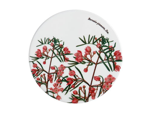 Maxwell & Williams Royal Botanic Garden Ceramic Round Coaster 9.5cm Boronia - ZoeKitchen