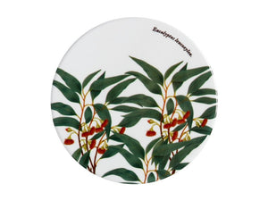 Maxwell & Williams Royal Botanic Garden Ceramic Round Coaster 9.5cm Flowering Gum - ZoeKitchen