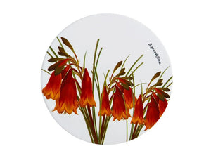 Maxwell & Williams Royal Botanic Garden Ceramic Round Trivet 20cm Christmas Bells - ZoeKitchen