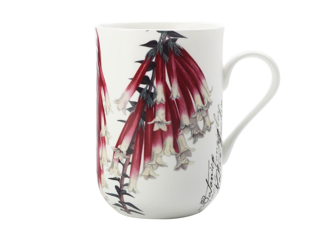 MAXWELL & WILLIAMS BOTANIC MUG FUCHSIA 300ML GB - ZoeKitchen