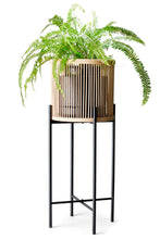 Load image into Gallery viewer, Salt&Pepper Rhythm Plant Stand Natural 35x80cm - ZoeKitchen