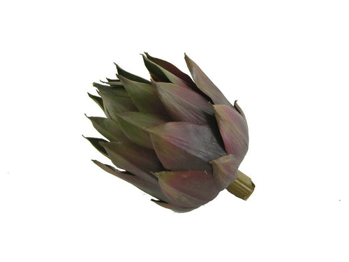 Artichoke Head 11cm Gn - ZOES Kitchen