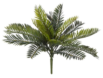 Rogue Cycas Bush Mini 38x36cm Green