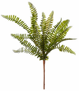 Rogue Fern Pick Green 23x23x42cm - ZOES Kitchen