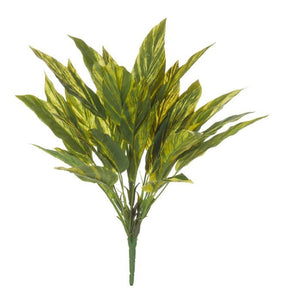 Rogue Tradescantia Bush 50cm Varigated - ZOES Kitchen