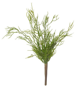 Rogue Mini Rhipsalis 20x25x40cm Green - ZOES Kitchen