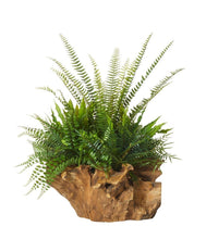 Load image into Gallery viewer, Rogue Fern Mix - Stump Planter 61cm Grn - ZOES Kitchen
