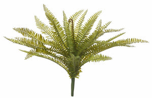 Rogue Boston Fern Green 50x50x50cm - ZoeKitchen