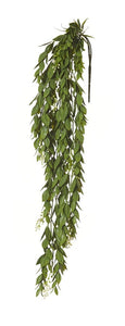 Rogue Flowering Trailing Hanging Bush Green 66cm - ZOES Kitchen