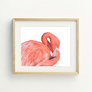 Great Flamingo Print