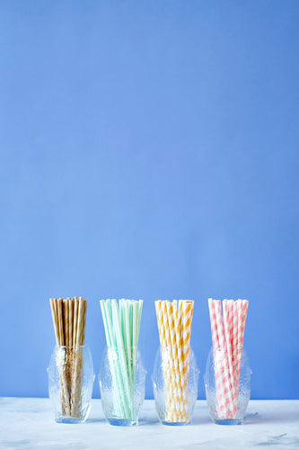 Eco-Friendly Paper Straws 24ct