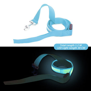 Amazing LED Glow in the dark dog leash