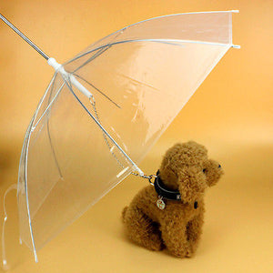 Transparent Dog Umbrella with Built-in Leash