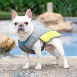 French bulldog summer cooling vest