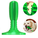 Dog Toothbrush Stick Toy