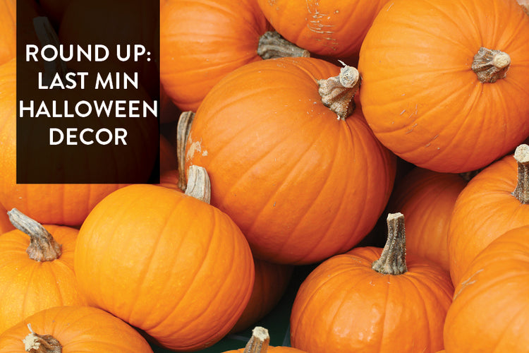 Round Up: Last Min Halloween Decor