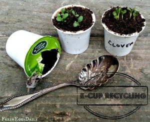 Upcycle Your K-Cups