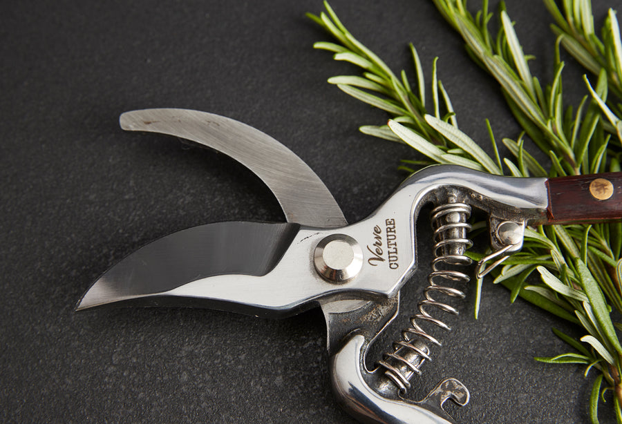 Thai Kitchen and Garden Shears