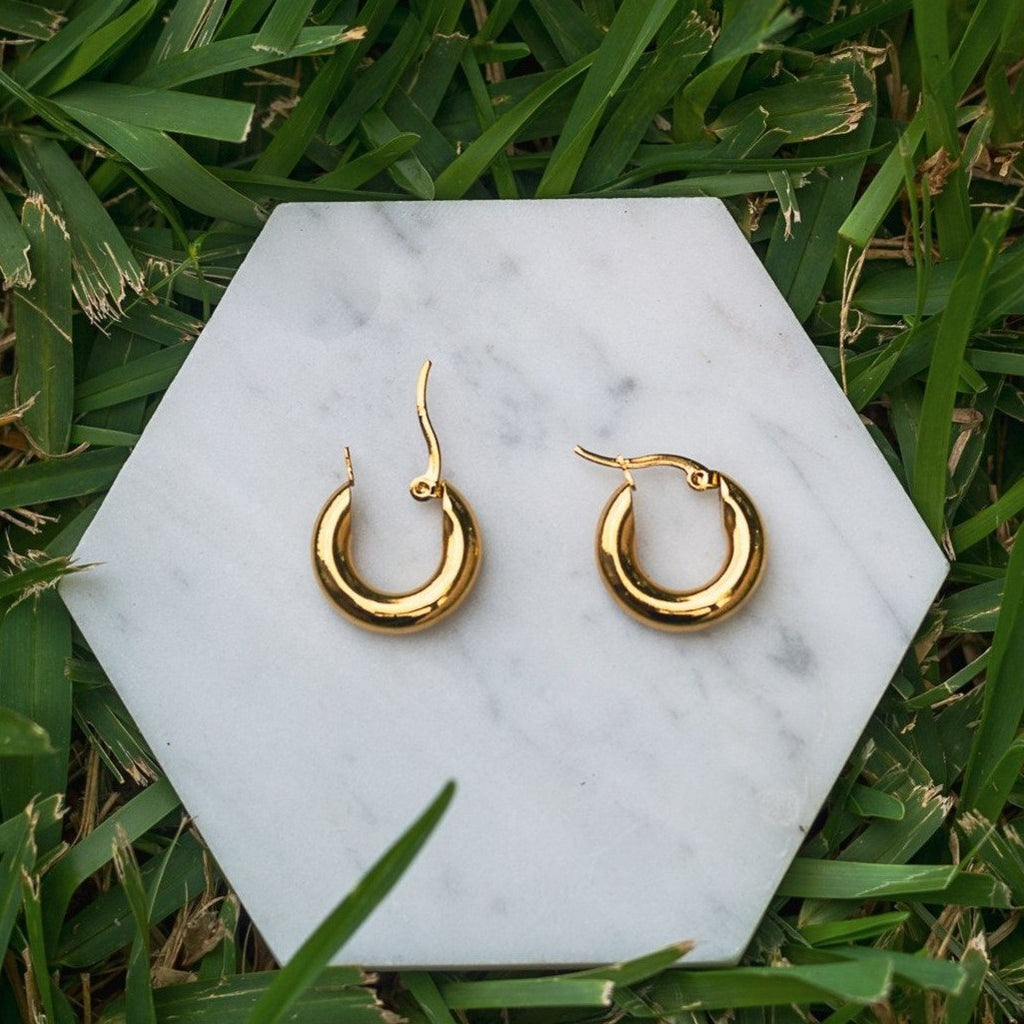 Karma -Small Gold Hoops -20mm - IRIS 1956