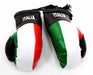 Italia Boxing Gloves