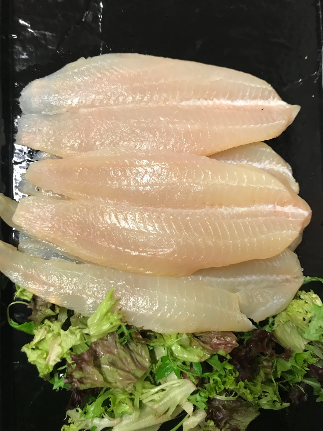 5 Large Smoked Haddock