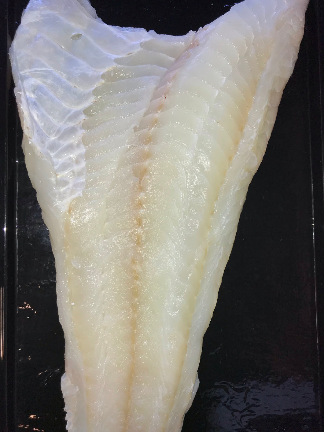 Fresh Large Cod Side Fillet