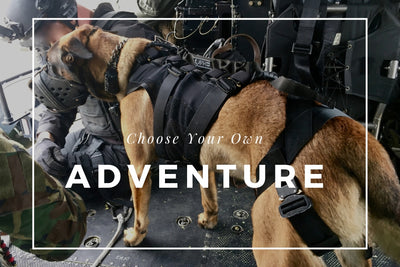 Choosing the right Vest for your Working Dog