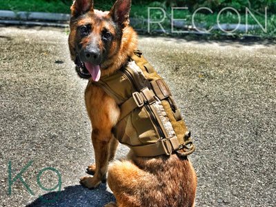3 things to consider when buying a K9 tactical vest