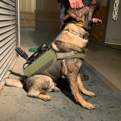 Recon K9 Seeks and Finds New Ballistic Partner