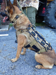 Remington K9 vest