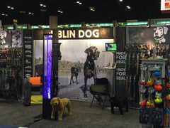 Dublin Dog Booth