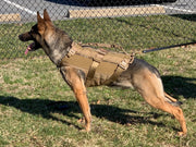 Dagger K9 Tactical Vest (Non-Kitted)