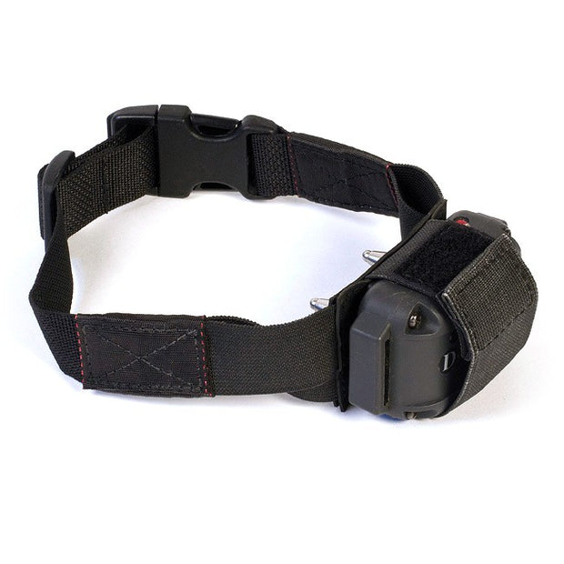 Tactical e-Collar Mount