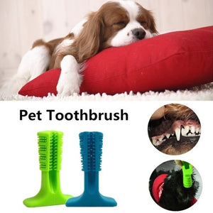 Dog Chewing Toothbrush 2019 - Yosif Store
