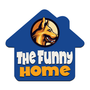 The Funny Home