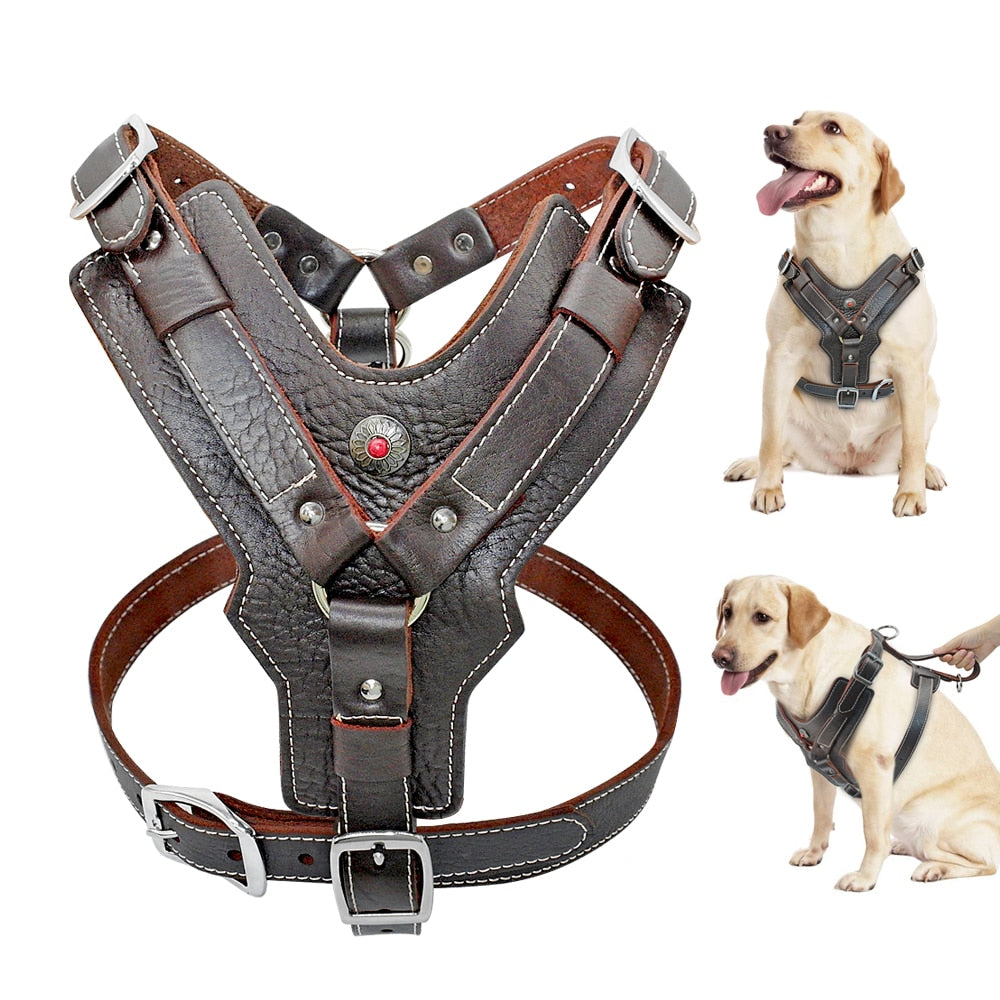 Genuine Leather Harness 🐶
