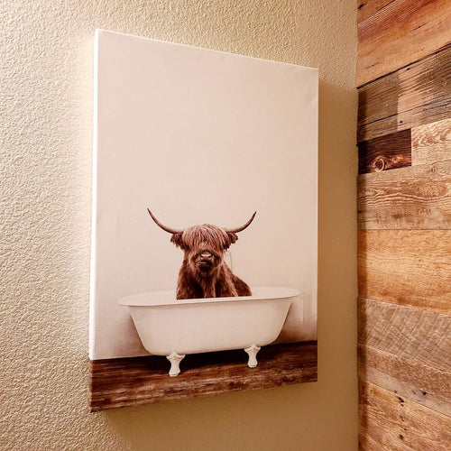 Highland cow in bathtub