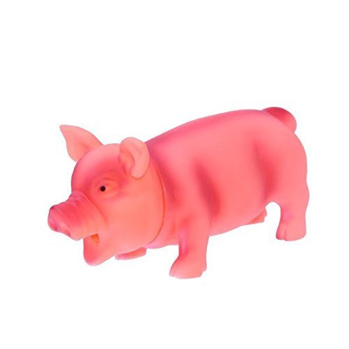 Dazzling Toys Screaming Pig | Funny Squeeze Toy