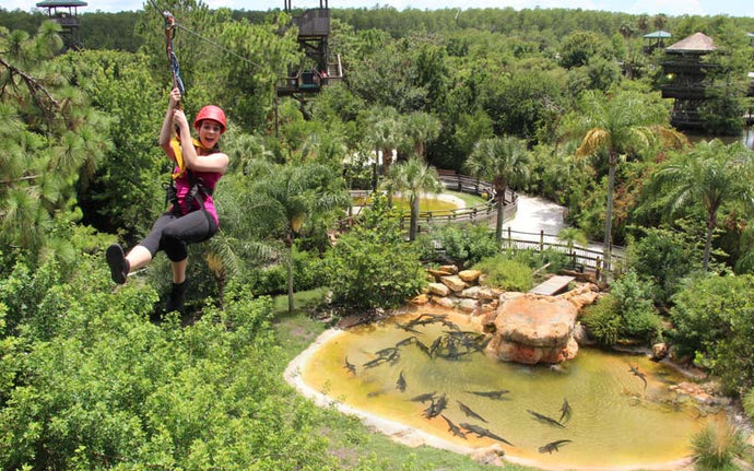 Gatorland Screamin Gator Zip Line 2021 | All You Need To Know
