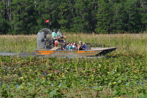 boggy creek airboat tour day