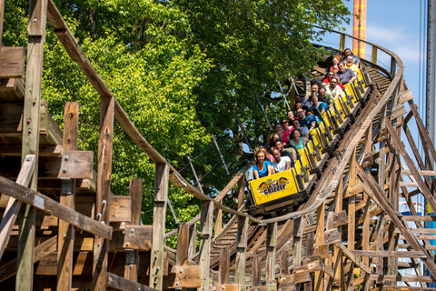 kings dominion grizzly