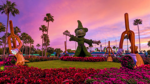 things to do hollywood studios