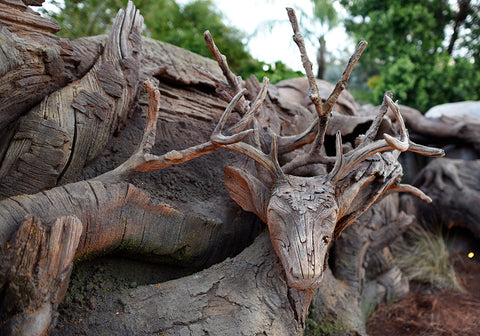 tree of life roots
