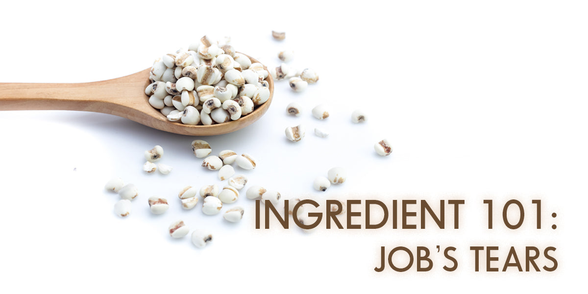 Asian Skincare Ingredient 101: Job's Tears / Pearl Barley